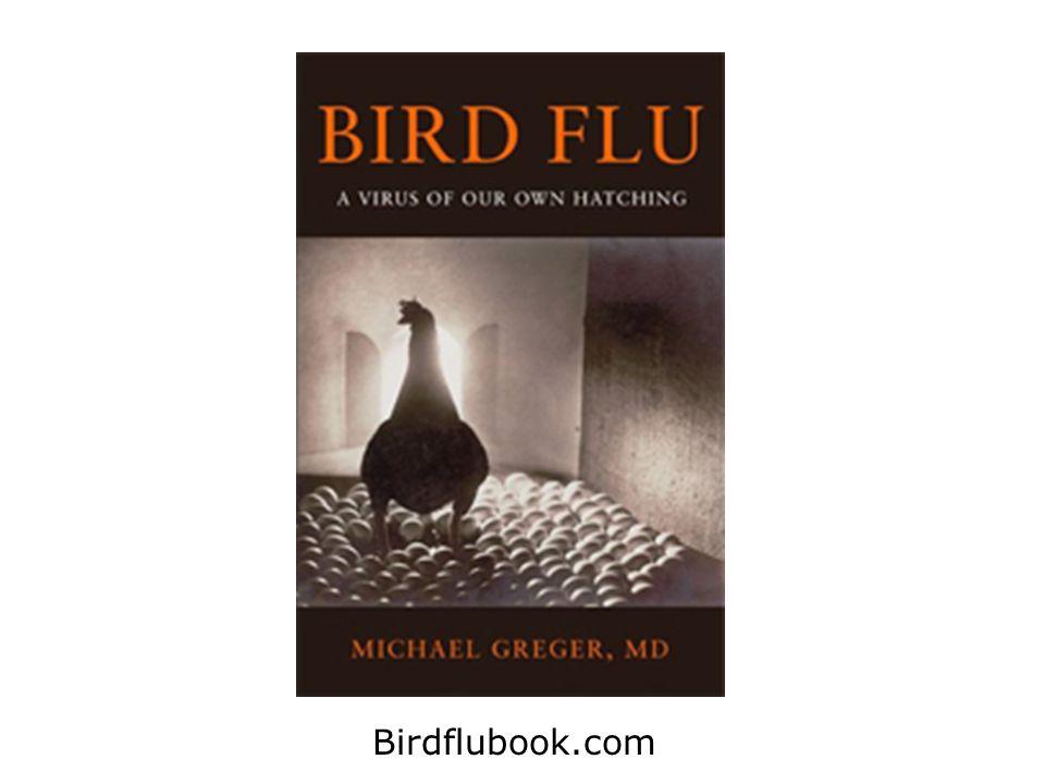 Birdflubook.com