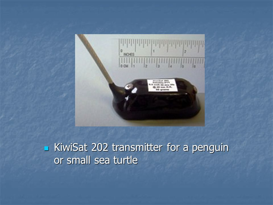 KiwiSat 202 transmitter for a penguin or small sea turtle KiwiSat 202 transmitter for a penguin or small sea turtle
