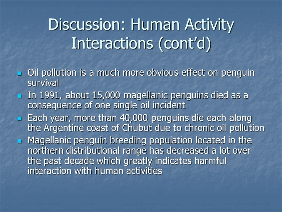 Discussion: Human Activity Interactions (contd) Oil pollution is a much more obvious effect on penguin survival Oil pollution is a much more obvious effect on penguin survival In 1991, about 15,000 magellanic penguins died as a consequence of one single oil incident In 1991, about 15,000 magellanic penguins died as a consequence of one single oil incident Each year, more than 40,000 penguins die each along the Argentine coast of Chubut due to chronic oil pollution Each year, more than 40,000 penguins die each along the Argentine coast of Chubut due to chronic oil pollution Magellanic penguin breeding population located in the northern distributional range has decreased a lot over the past decade which greatly indicates harmful interaction with human activities Magellanic penguin breeding population located in the northern distributional range has decreased a lot over the past decade which greatly indicates harmful interaction with human activities