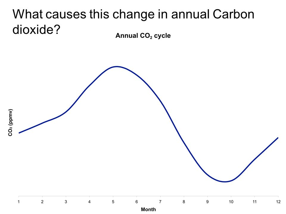 What causes this change in annual Carbon dioxide
