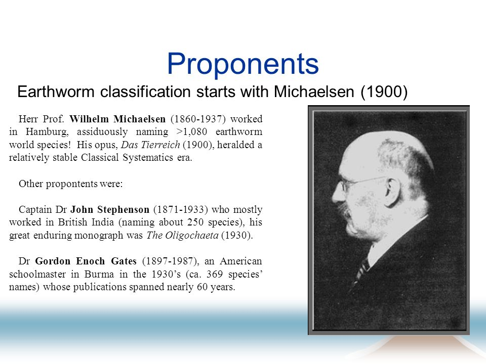Proponents Earthworm classification starts with Michaelsen (1900) Herr Prof. Wilhelm Michaelsen (1860-1937) worked in Hamburg, assiduously naming >1,0