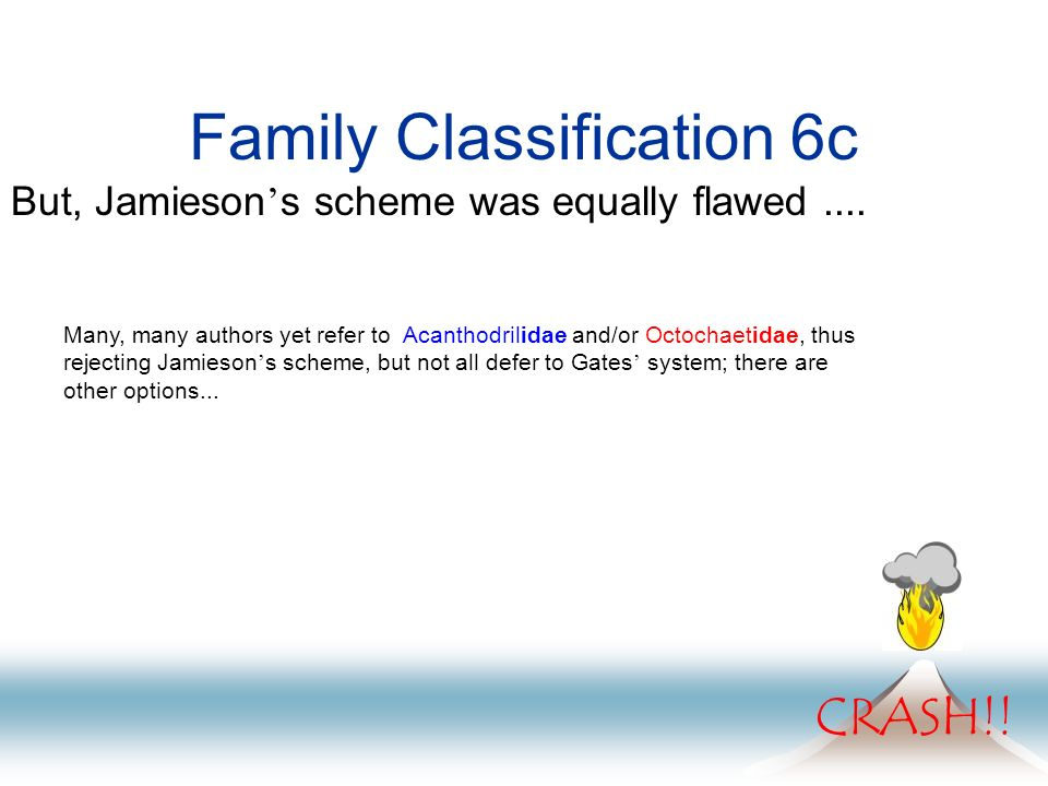 Family Classification 6c But, Jamieson s scheme was equally flawed.... CRASH!! Many, many authors yet refer to Acanthodrilidae and/or Octochaetidae, t