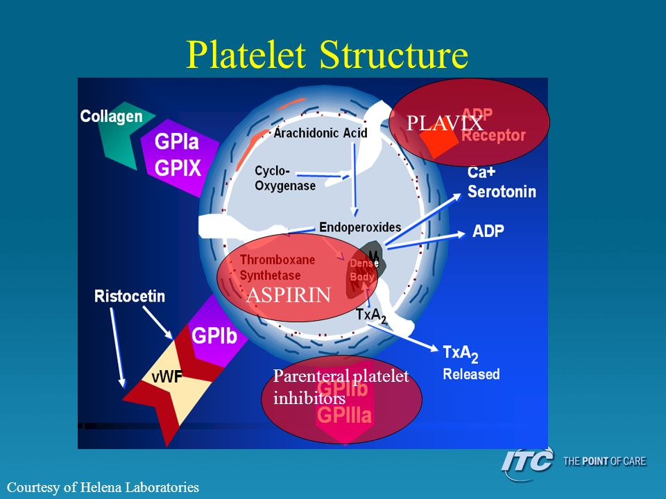 Platelet Structure Courtesy of Helena Laboratories PLAVIX ASPIRIN Parenteral platelet inhibitors