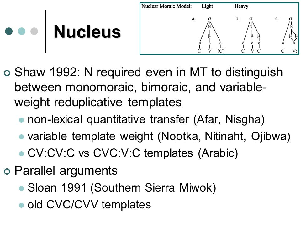 Nucleus Shaw 1992: N required even in MT to distinguish between monomoraic, bimoraic, and variable- weight reduplicative templates non-lexical quantitative transfer (Afar, Nisgha) variable template weight (Nootka, Nitinaht, Ojibwa) CV:CV:C vs CVC:V:C templates (Arabic) Parallel arguments Sloan 1991 (Southern Sierra Miwok) old CVC/CVV templates