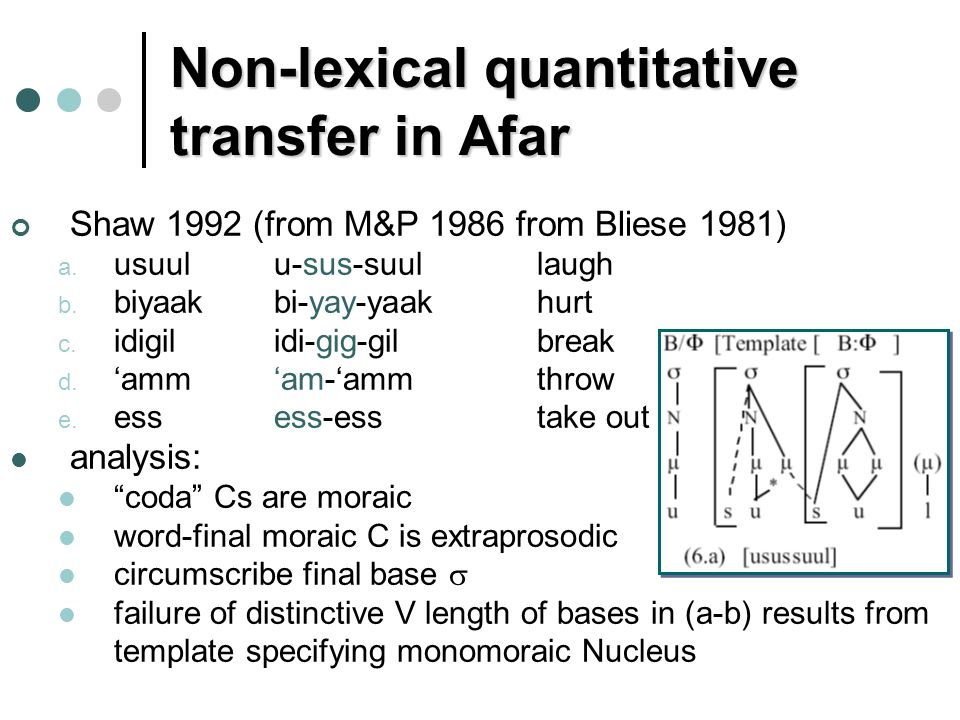 Non-lexical quantitative transfer in Afar Shaw 1992 (from M&P 1986 from Bliese 1981) a.