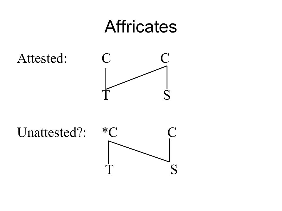 Affricates Attested:C C T S Unattested?:*C C T S