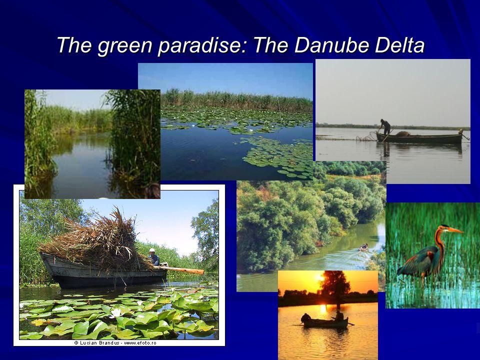 The green paradise: The Danube Delta