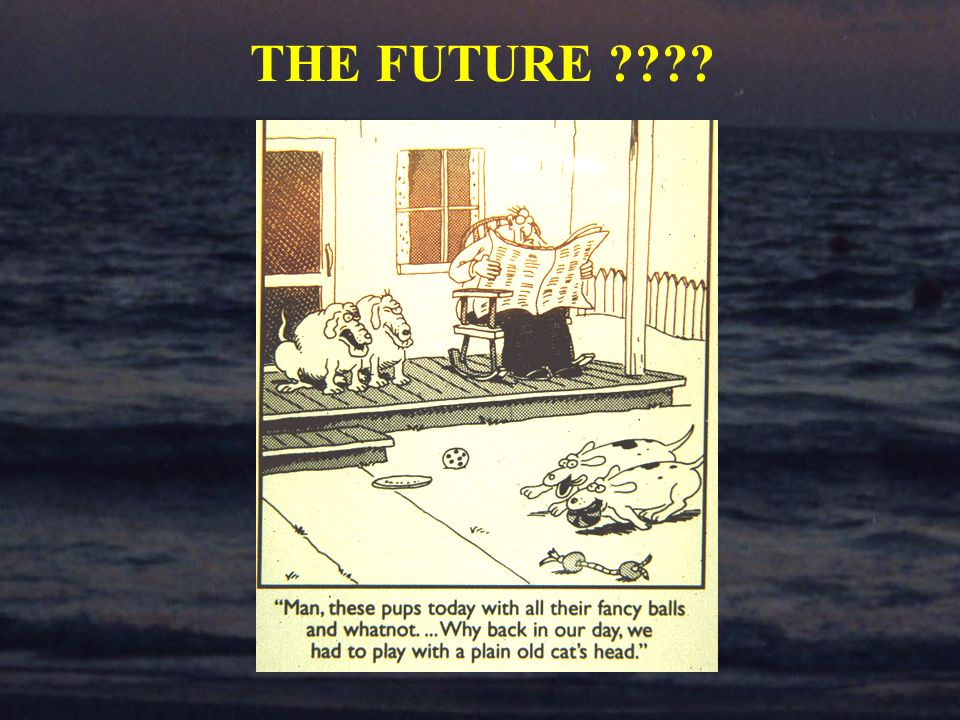 THE FUTURE ????