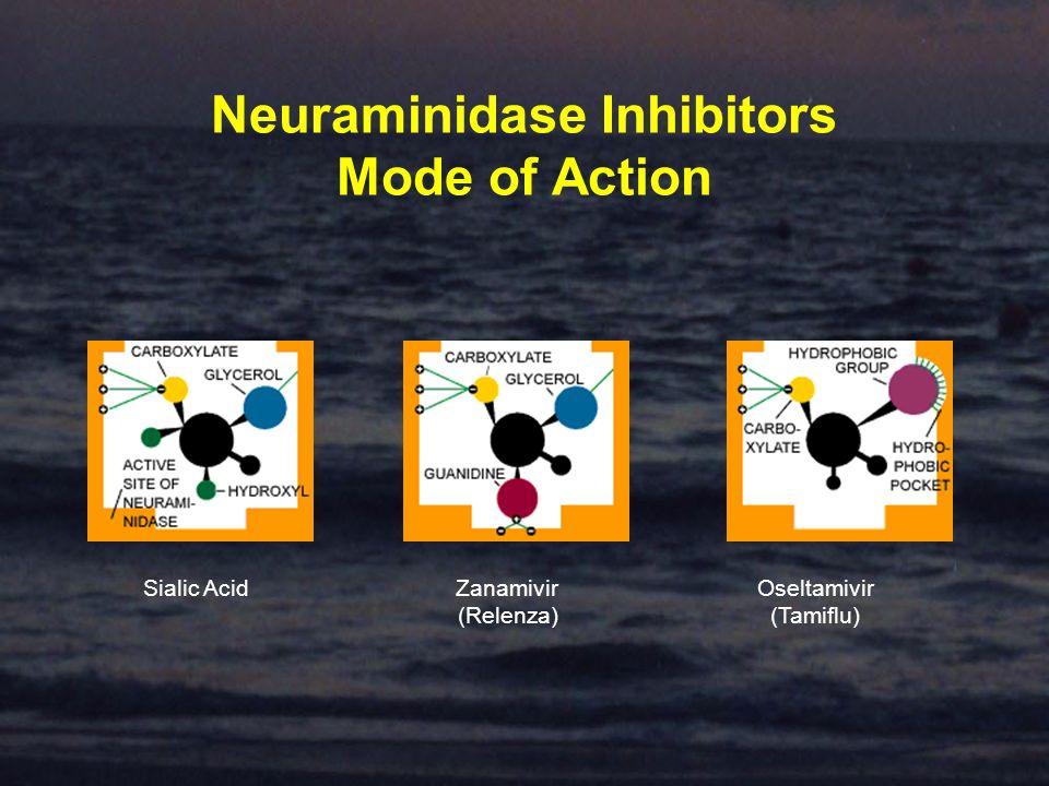 Neuraminidase Inhibitors Mode of Action Sialic AcidZanamivir (Relenza) Oseltamivir (Tamiflu)