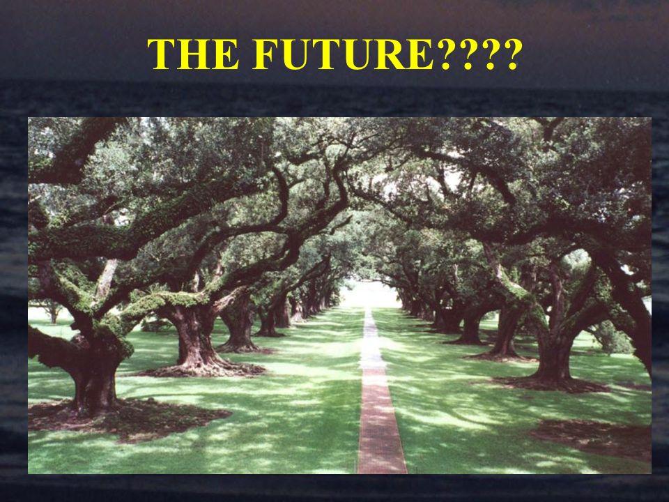 THE FUTURE????
