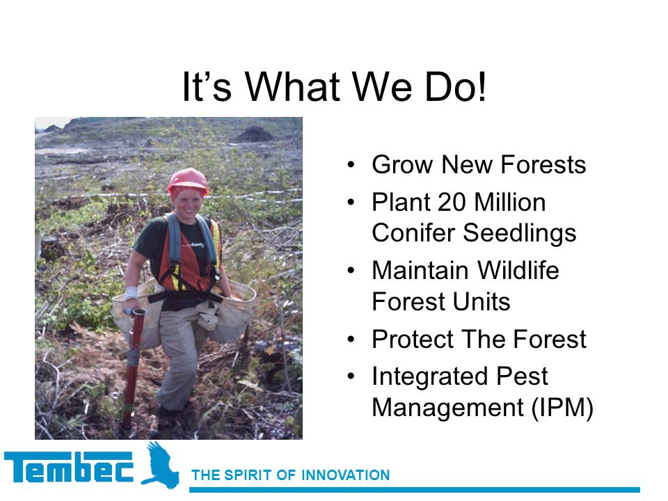 Its What We Do! Grow New Forests Plant 20 Million Conifer Seedlings Maintain Wildlife Forest Units Protect The Forest Integrated Pest Management (IPM)