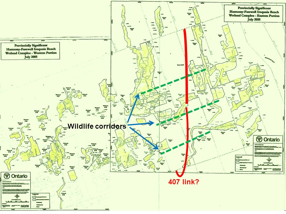 407 link Wildlife corridors