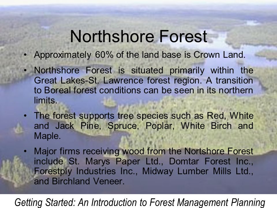 Getting Started: An Introduction to Forest Management Planning Northshore Forest Approximately 60% of the land base is Crown Land. Northshore Forest i