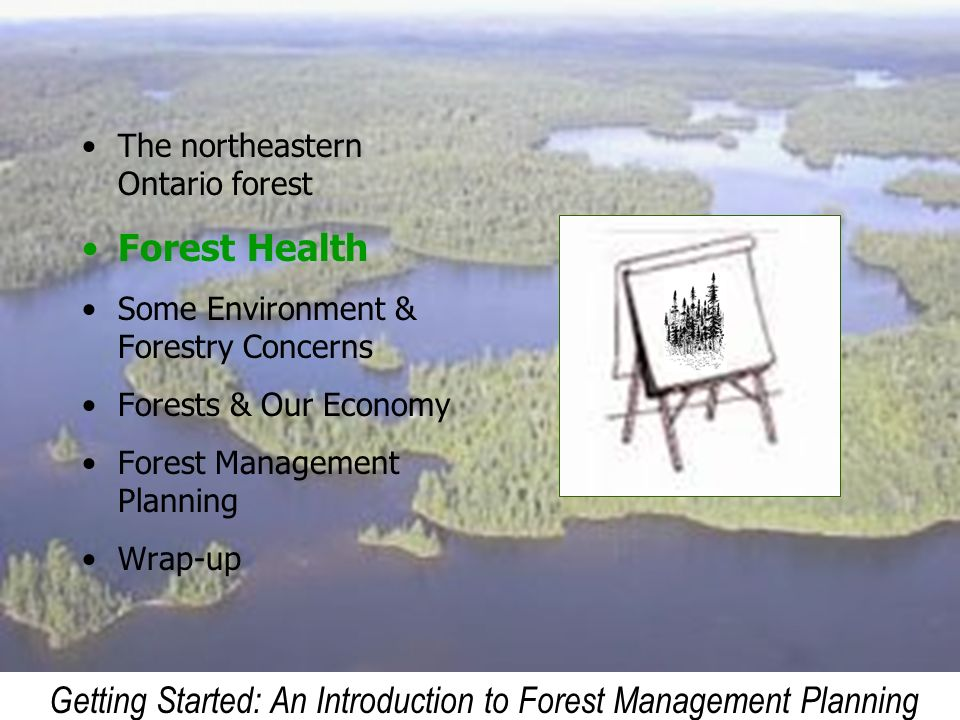 Getting Started: An Introduction to Forest Management Planning The northeastern Ontario forest Forest Health Some Environment & Forestry Concerns Fore