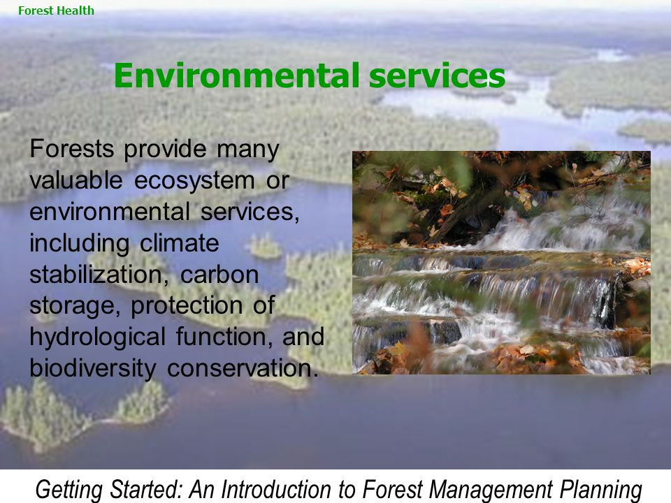 Getting Started: An Introduction to Forest Management Planning Forests provide many valuable ecosystem or environmental services, including climate st