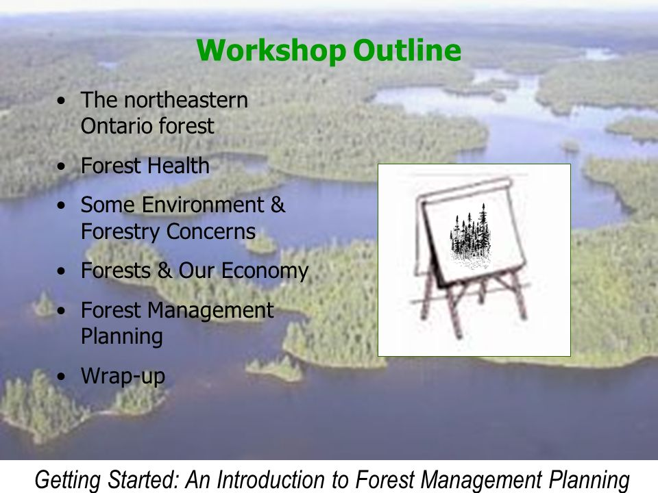 Getting Started: An Introduction to Forest Management Planning Workshop Outline The northeastern Ontario forest Forest Health Some Environment & Fores