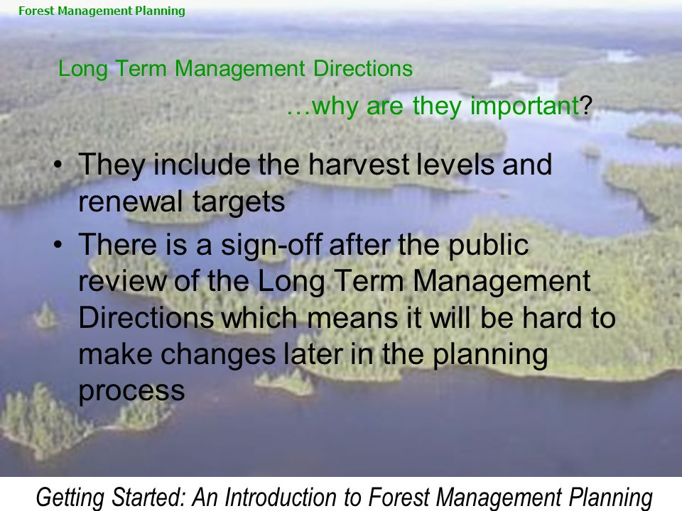 Getting Started: An Introduction to Forest Management Planning Long Term Management Directions …why are they important? They include the harvest level