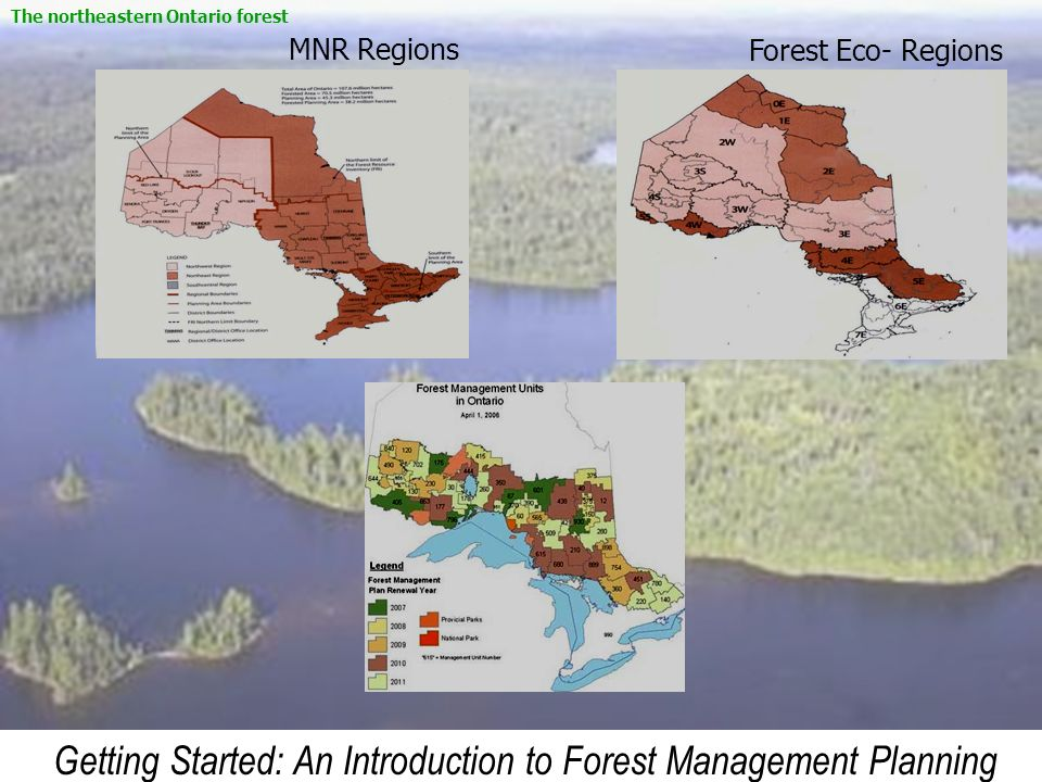 Getting Started: An Introduction to Forest Management Planning MNR RegionsForest Eco- Regions The northeastern Ontario forest
