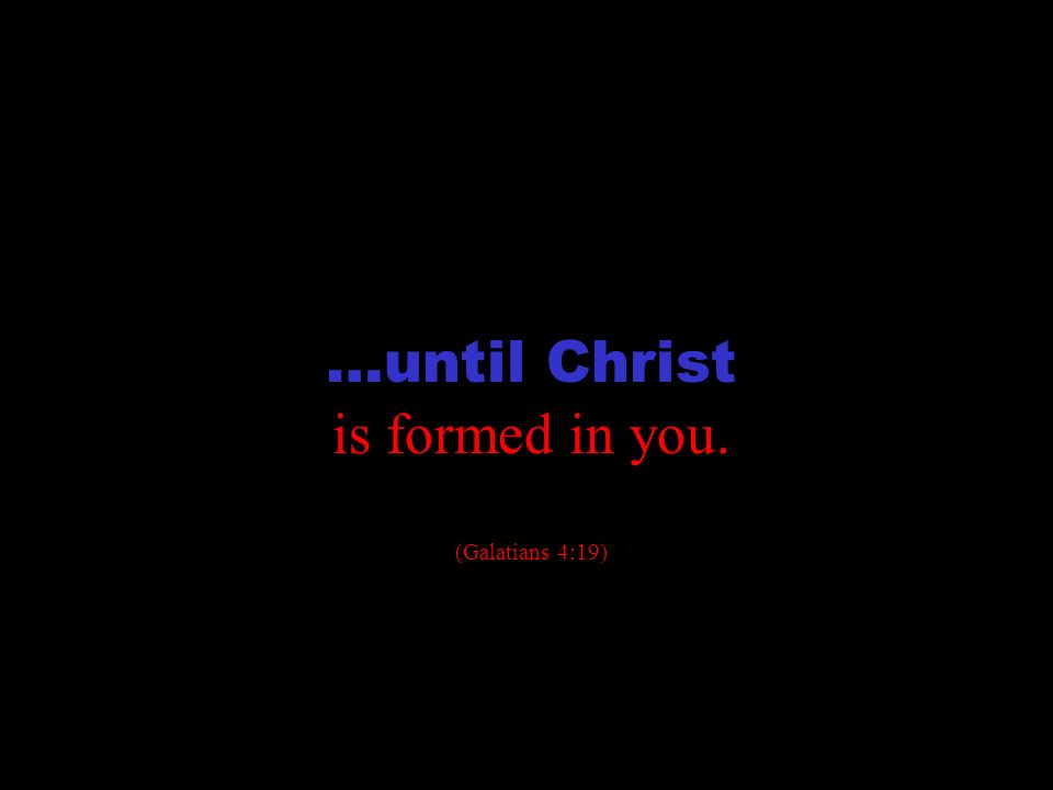 transformation …until Christ is formed in you. (Galatians 4:19)