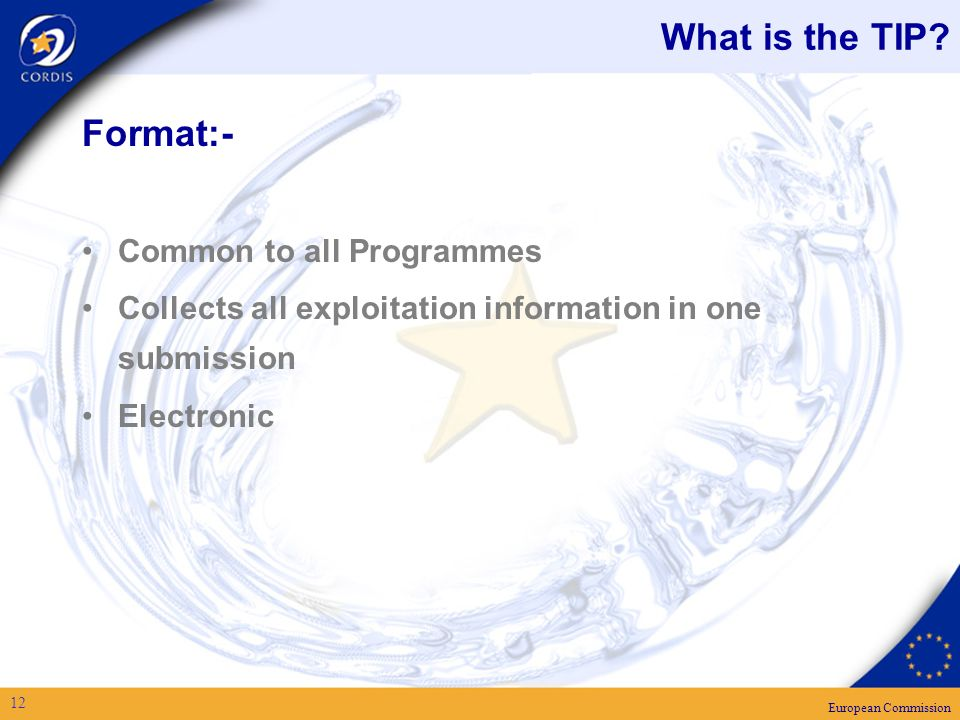 European Commission 12 What is the TIP.