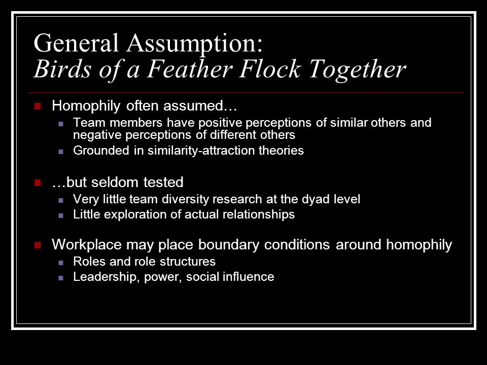 General Assumption: Birds of a Feather Flock Together Homophily often assumed… Team members have positive perceptions of similar others and negative perceptions of different others Grounded in similarity-attraction theories …but seldom tested Very little team diversity research at the dyad level Little exploration of actual relationships Workplace may place boundary conditions around homophily Roles and role structures Leadership, power, social influence