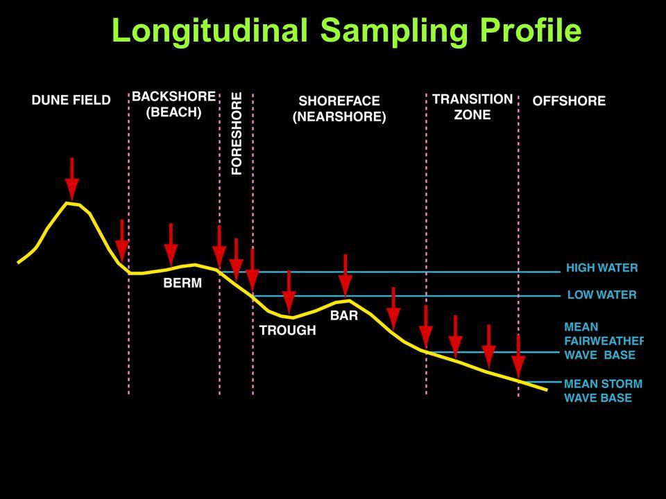 Longitudinal Sampling Profile