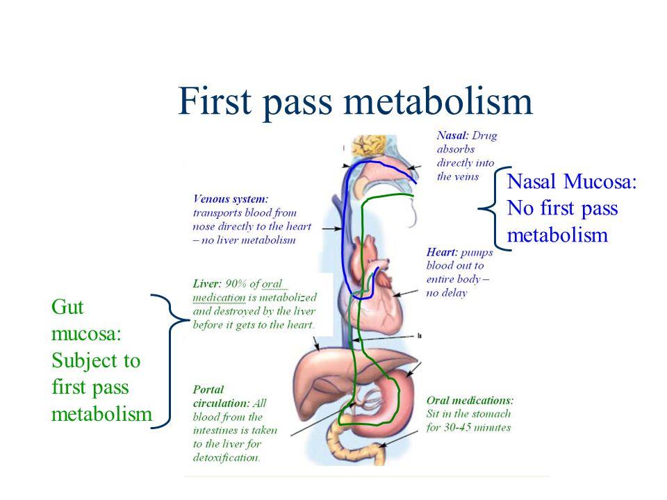 First pass metabolism Nasal Mucosa: No first pass metabolism Gut mucosa: Subject to first pass metabolism