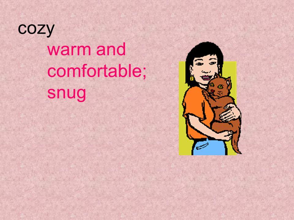 cozy warm and comfortable; snug
