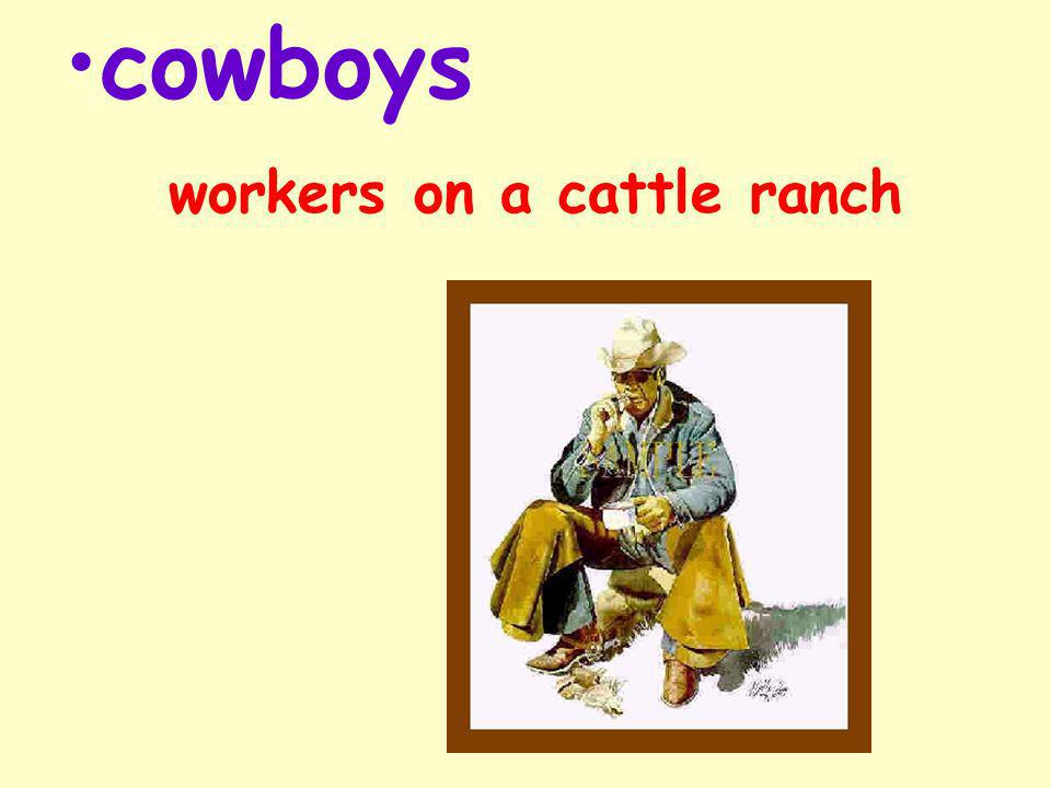 More Words to Know cowhand fantastic stampede stubborn wrangler
