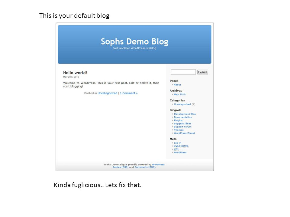 This is your default blog Kinda fuglicious.. Lets fix that.