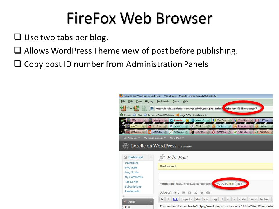 FireFox Web Browser Use two tabs per blog. Allows WordPress Theme view of post before publishing.