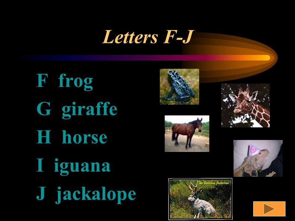 Letters A-E A alligator B birds C cat D dog E elephant
