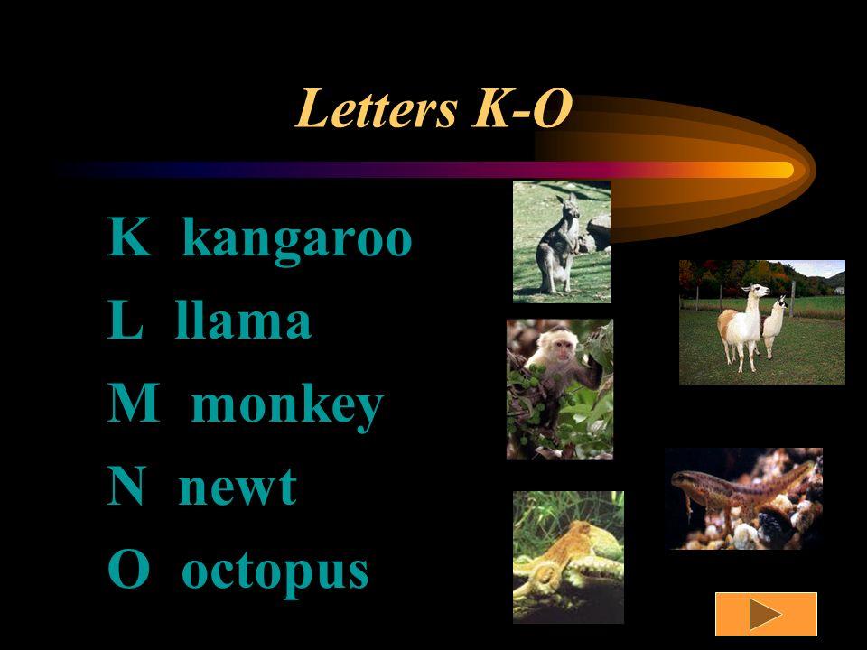Letters F-J F frog G giraffe H horse I iguana J jackalope