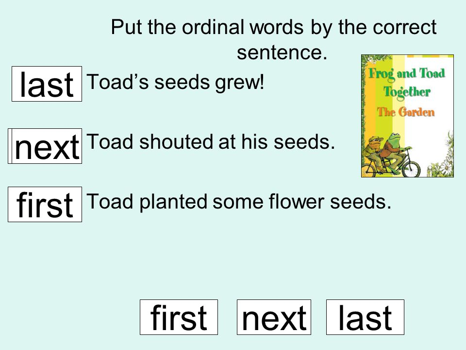 Put the ordinal words by the correct sentence. Toads seeds grew! Toad shouted at his seeds. Toad planted some flower seeds. firstnextlast first next