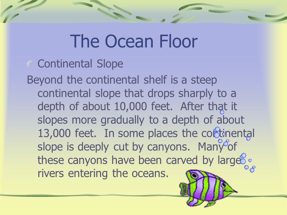 The Ocean Floor Continental Slope Beyond the continental shelf is a steep continental slope that drops sharply to a depth of about 10,000 feet. After