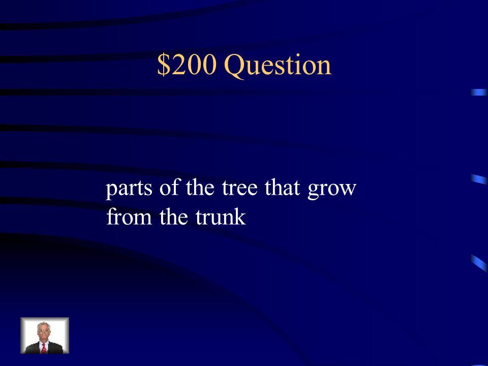$200 Question apple, pear, peach