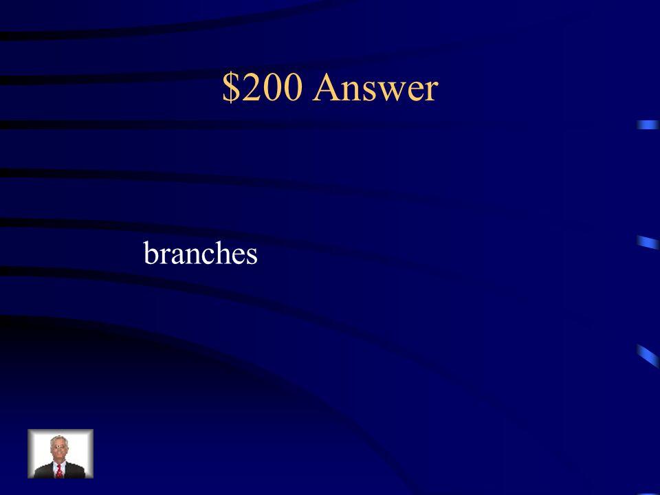 $200 Answer fruit