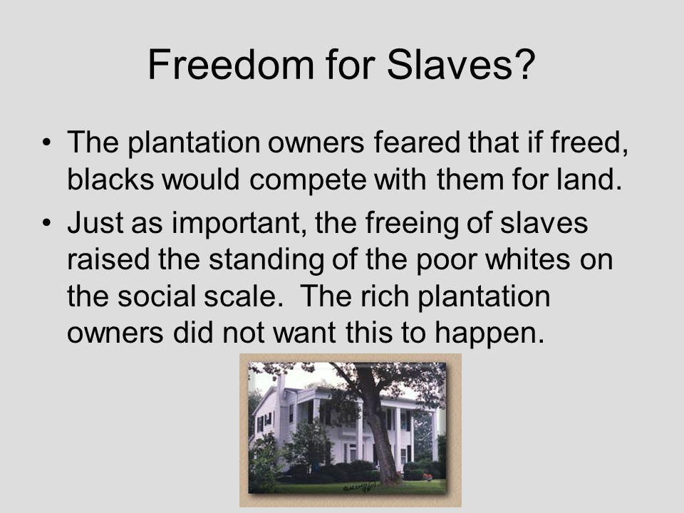 Plantation Owners It is easy to understand the interest of the planters in slave holding, they owned most of the slaves.