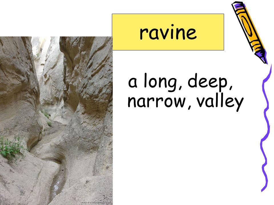 den or resting place of a wild animal lair gnawed headland kelp lair ravine shellfish sinew