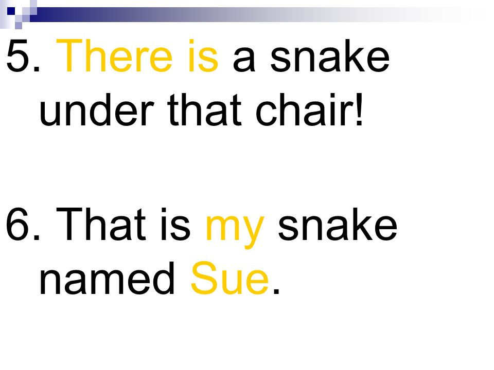 5. There is a snake under that chair! 6. That is my snake named Sue.