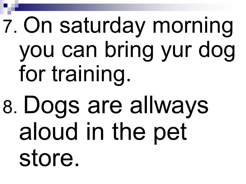 7. On saturday morning you can bring yur dog for training. 8. Dogs are allways aloud in the pet store.
