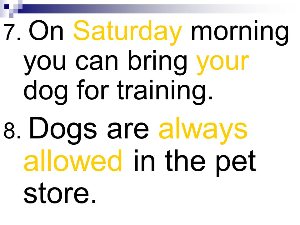 7. On Saturday morning you can bring your dog for training. 8. Dogs are always allowed in the pet store.