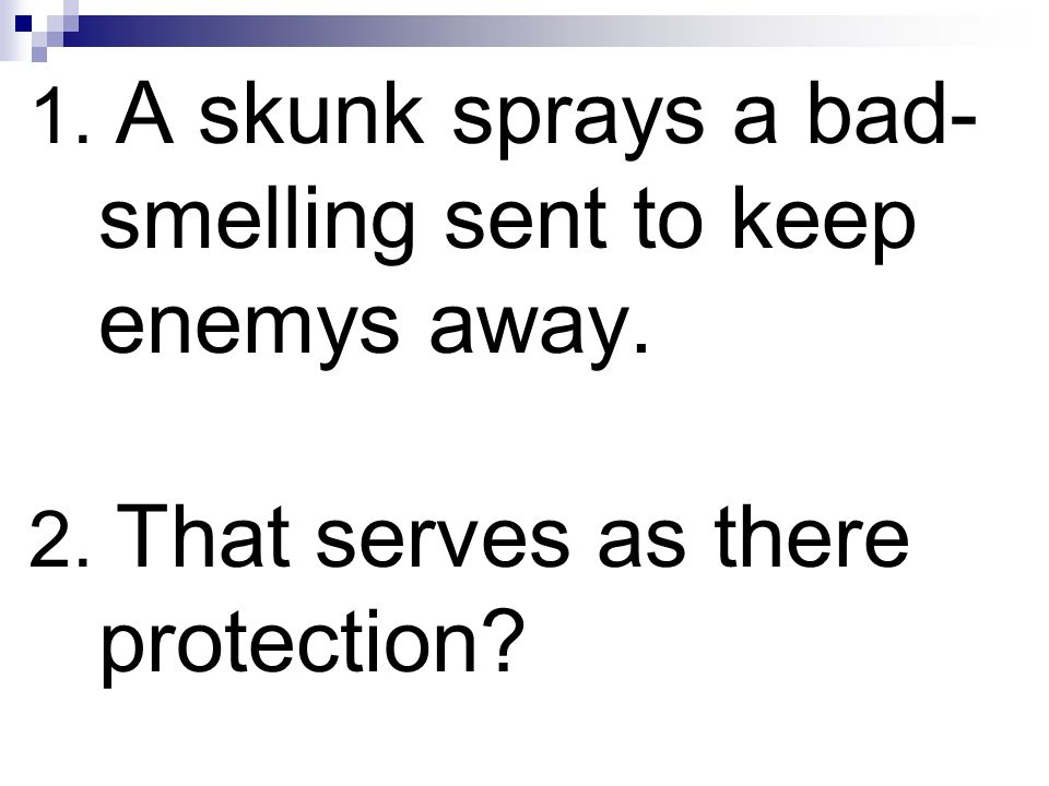 1. A skunk sprays a bad- smelling sent to keep enemys away. 2. That serves as there protection?