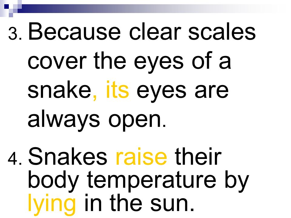 3. Because clear scales cover the eyes of a snake, its eyes are always open. 4. Snakes raise their body temperature by lying in the sun.