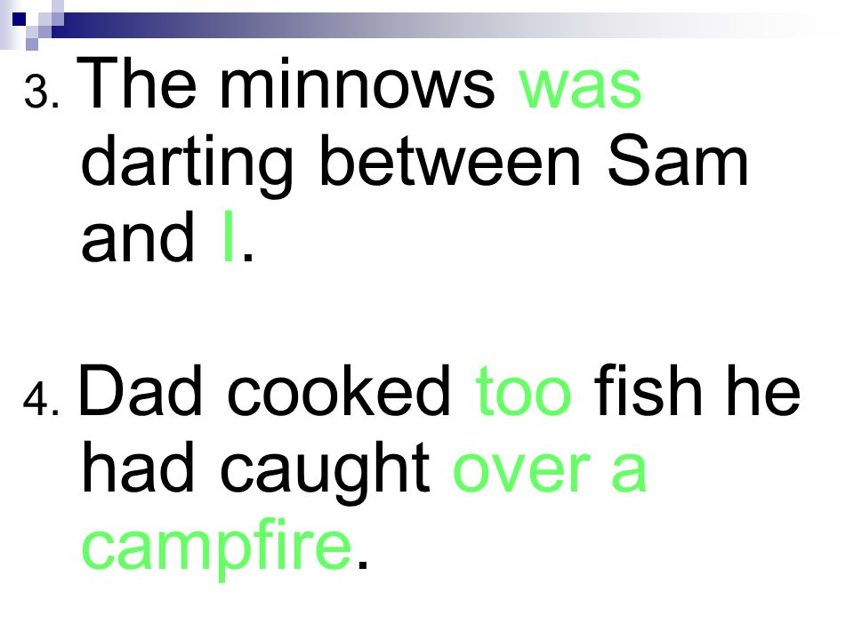 3. The minnows was darting between Sam and I. 4. Dad cooked too fish he had caught over a campfire.