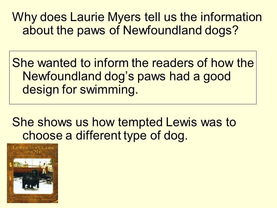 Why does Laurie Myers tell us the information about the paws of Newfoundland dogs? She wanted to inform the readers of how the Newfoundland dogs paws