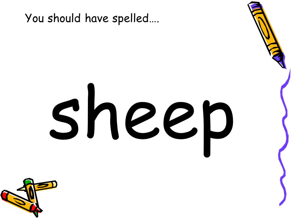 You should have spelled…. sheep