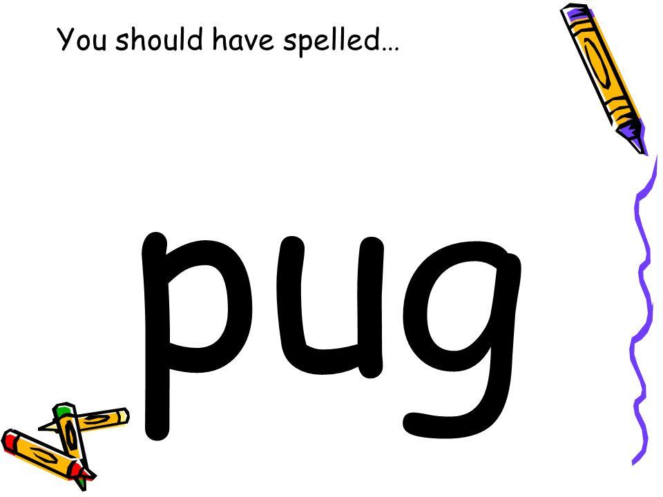 You should have spelled… pug