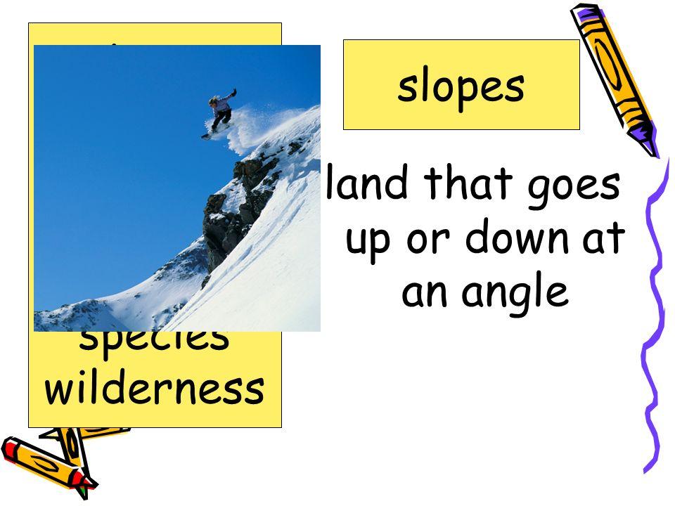 Words to Know glacier impressive naturalist preserve slopes species wilderness