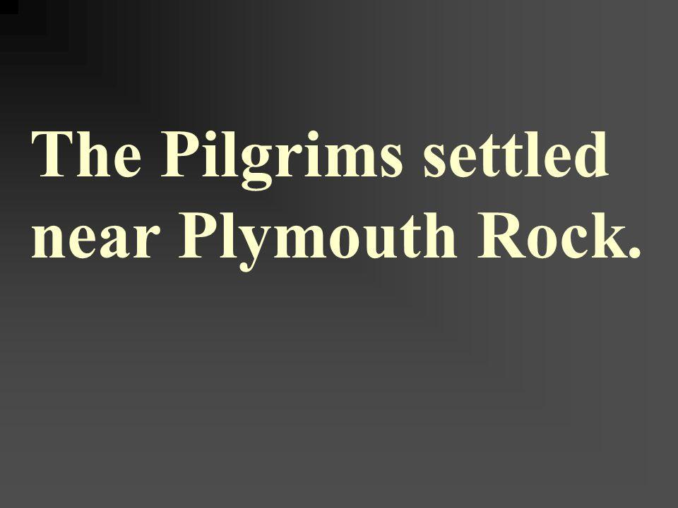 The Pilgrims settled near Plymouth Rock.